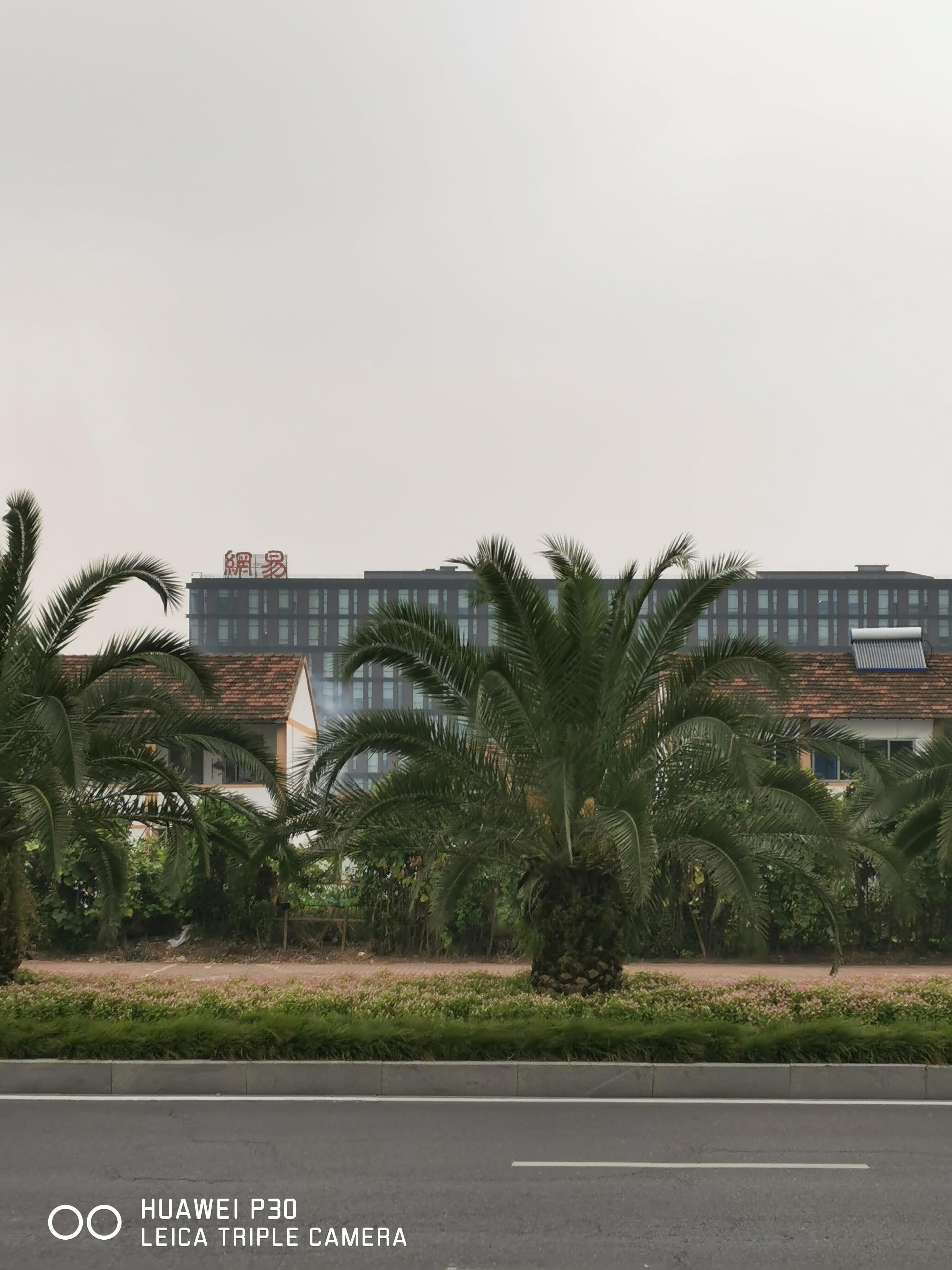 网易杭研所